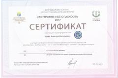 Всероссийский конкурс Мастерство и безопасность 2017