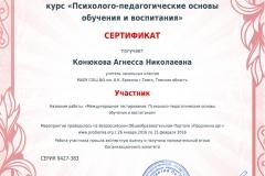 Конюкова_license